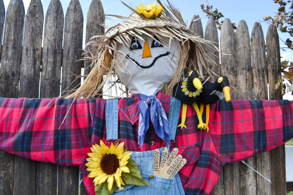Scarecrow-Mike Parks_3